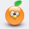 orange penguin
